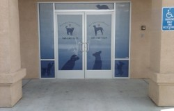 Bear Valley Animal Hospital